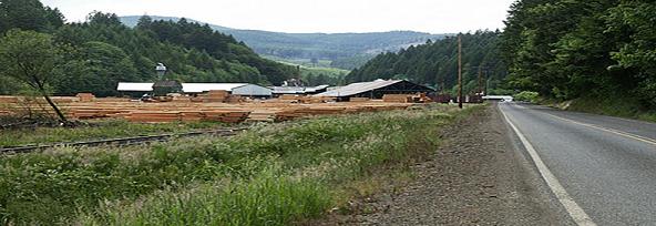 Sawmill.png