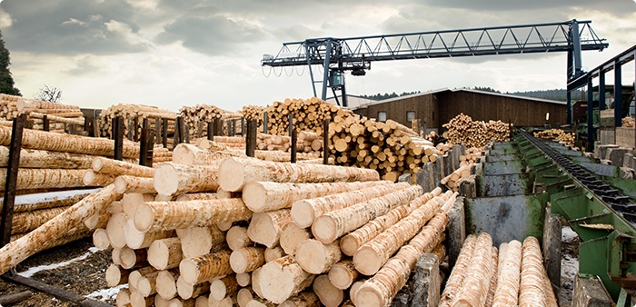 Soft Starters for the Sawmilling & Wood Products Industry