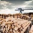 Sawmilling